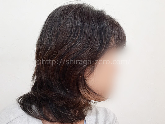 mayomayo-prior-process_introphoto_hairstyle01