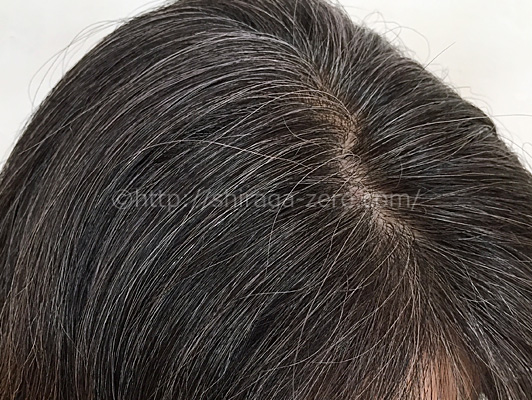 mayomayo-prior-process_introphoto_hairstyle03